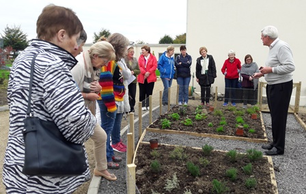 Herb Garden Established at Solas Bhride