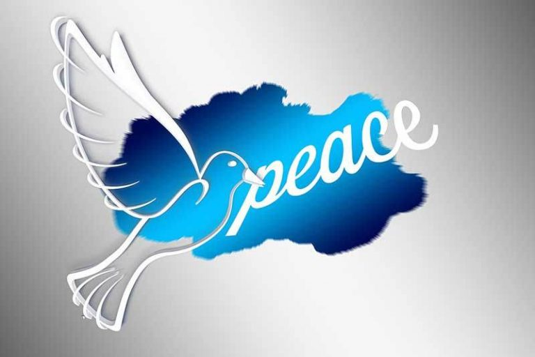 2019 World Day of Peace