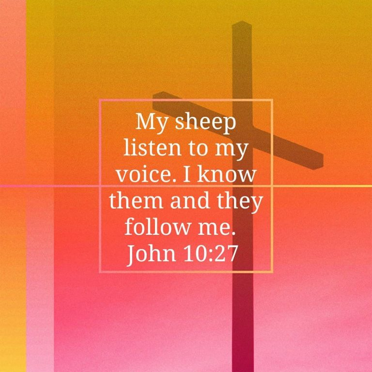 Fourth Sunday of Easter – Whose Voice are You Tuned Into?
