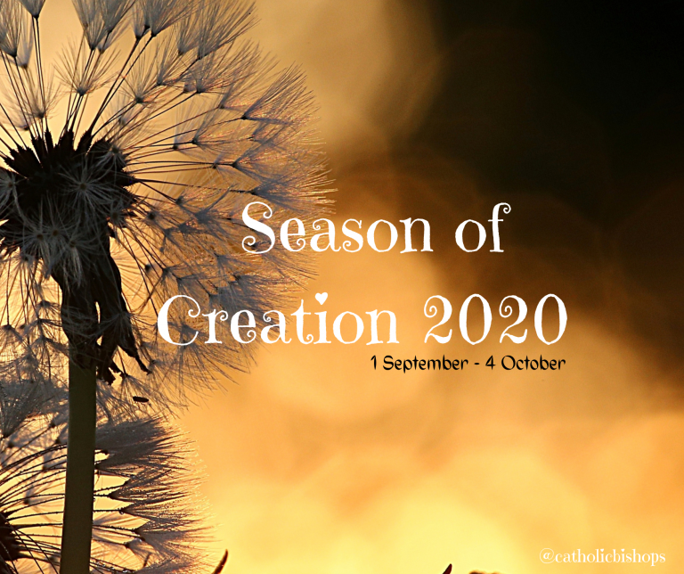 Thoughts for 2020 Season of Creation