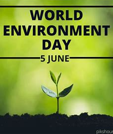 World Environment Day: 5 June
